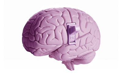 Glutamate-signals-are-transmitted-to-switch-for-synapatic-plasticity-in-human-brain-1