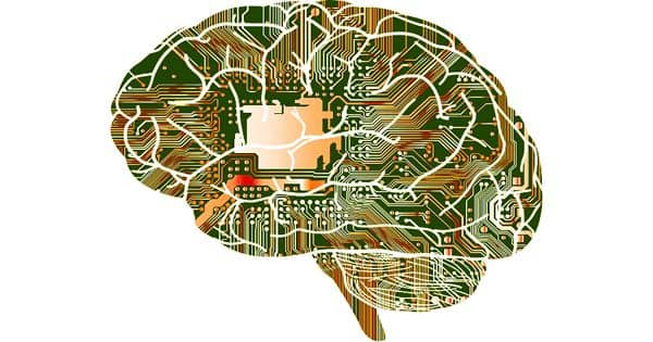 How fine-tuned brain activities are programmed for computer programming?