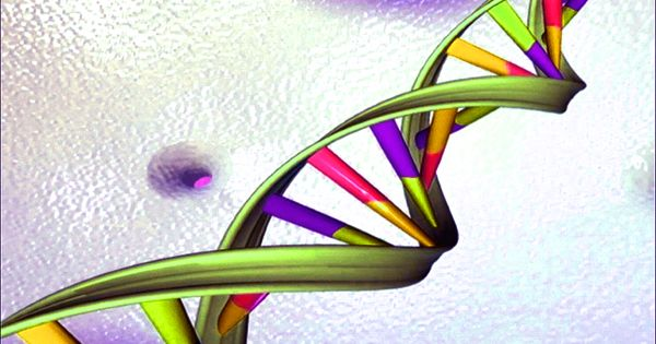 Researchers developed advanced explainable AI for encoded in DNA