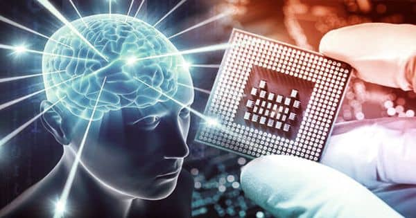 Scientists are physically integrating human brain stem cells into AI microchips