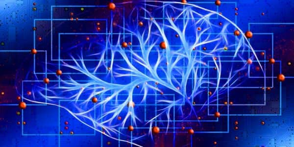 Computer-based-AI-software-can-function-like-human-intelligence-1