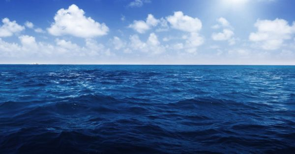 Huge hydrocarbon cycle revealed in a neglected area of ocean