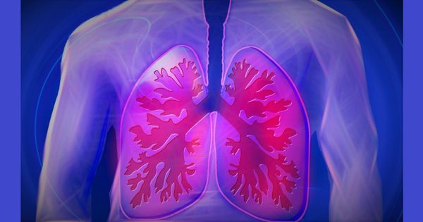 Scientists-evaluated-facts-to-assessment-of-harms-and-benefits-of-lung-cancer-screening-1