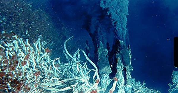 Seafloor Microbes Are Living On The Products Of Irradiated Water
