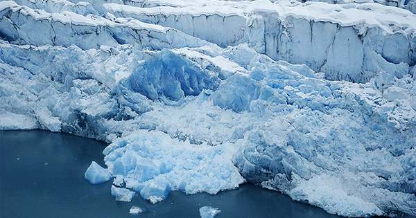 Almost All Global Glaciers Are Losing Mass and the Loss Is Accelerating