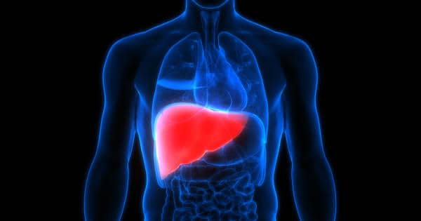Exercise Regimen Reduces Liver Steatosis and Stiffness in Patients