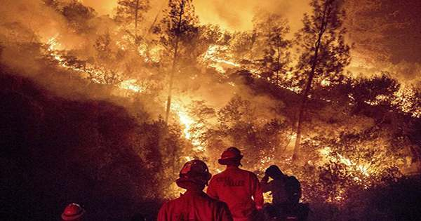 Humans Have Managed Landscapes With Fire For Almost 100,000 Years