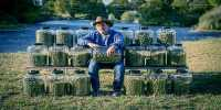 Jim Belushi is Chasing the Magic in Cannabis