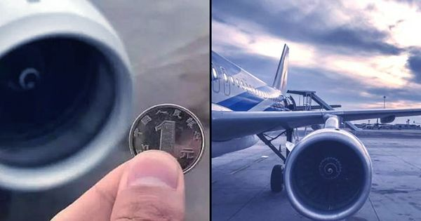 Man Throws Coins Into Jet Engine For Good Luck, Grounds Entire Flight