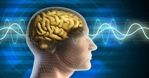 Researchers Developed a Brain-like Computing Device that is Capable to Learn
