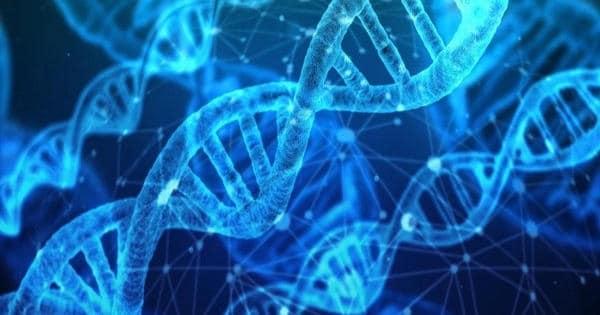 Researchers Identified a New Genetic Target for Acute Myeloid Leukaemia Treatment