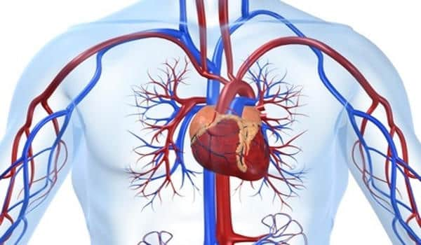 Trial-set-out-shows-AI-guided-Diagnosis-of-Heart-Disease-in-Routine-Practice-1