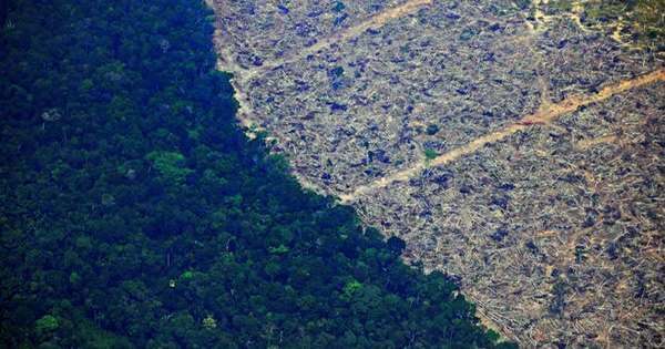 Drought Risk in the Amazon Far Greater than Previously thought