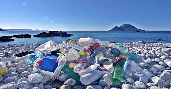Canada Lists Plastic as Toxic in Step Towards Ban on Single-Use Plastic
