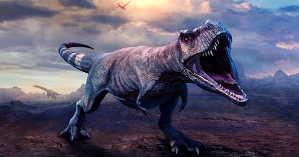 Where Tyrannosaurs Ruled, Even Mid-sized Carnivores Vanished