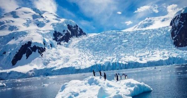 Antarctica's Record-Smashing Temperature of 18.3°C Officially Confirmed by UN