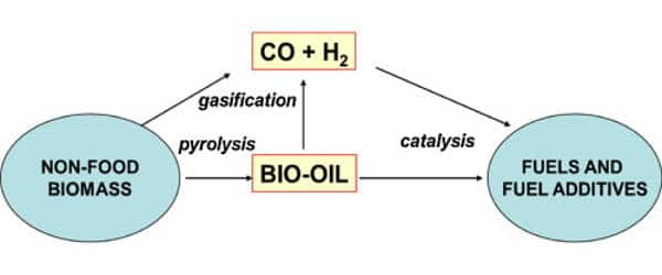 Catalyzing-Chemical-Reactions-Conversion-of-Biomass-into-Biofuel-1
