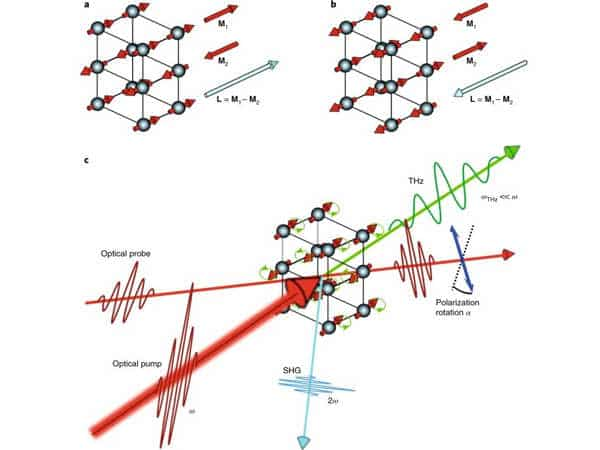 Magnetic-Phase-Transition-with-Transforming-a-Layered-Ferromagnet-for-Future-Electronics-1