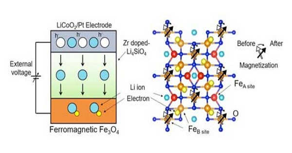 Magnetic Phase Transition with Transforming a Layered Ferromagnet for Future Electronics