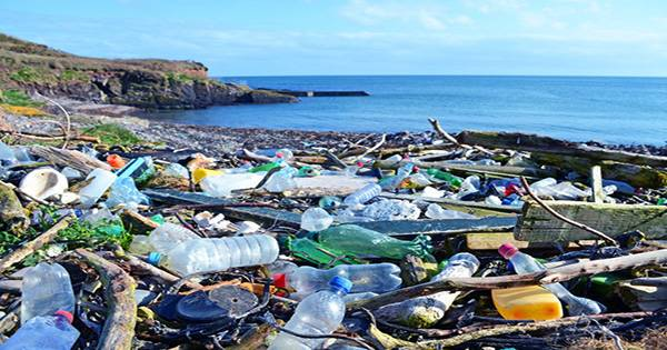 New Zealand will Ban Most Single-Use Plastics by 2025