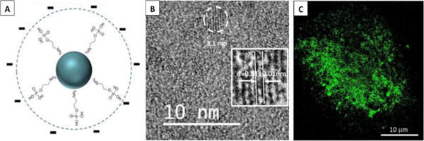 Researchers-Succeeded-in-Depositing-Nitrogen-containing-Organic-Molecules-1