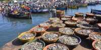 Food Security Threatened by Climate Change in Many Fish-dependent Countries