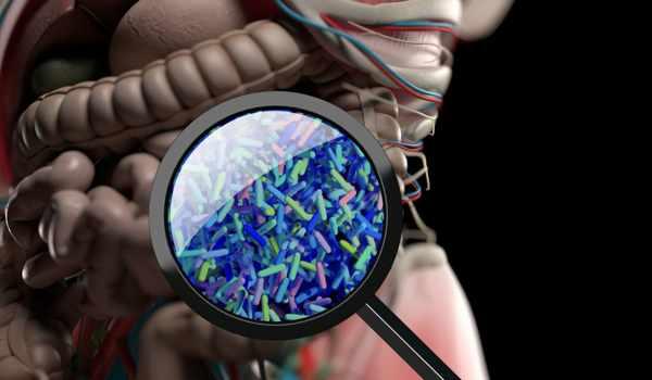 Inflammatory-Bowel-Disease-is-treated-with-Engineered-Yeast-Probiotic-1