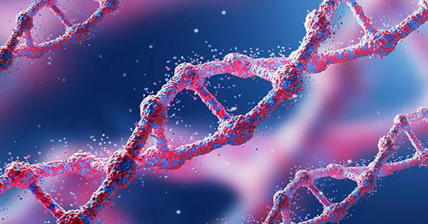 Less than Seven Percent of Our DNA is Uniquely Human, New Study Claims