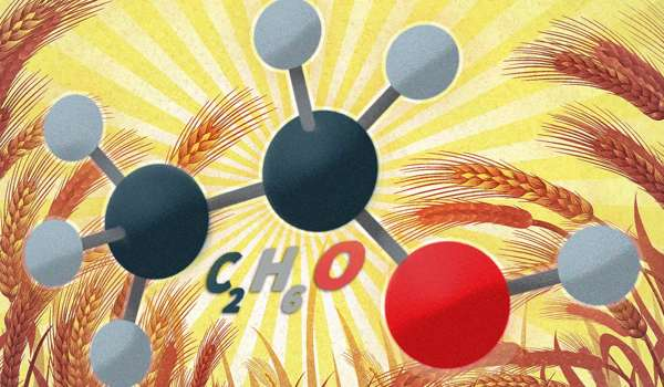 Researchers-Found-a-way-to-Reduce-Cellulosic-Feedstocks-Toxicity-to-Yeast-1