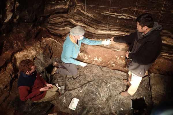 Researchers-analyzed-Denisova-Cave-Pleistocene-Sediment-DNA-1