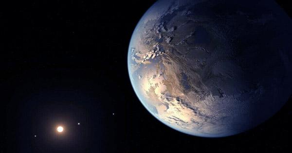 A Quarter of Sun-Like Stars Swallow their Planets