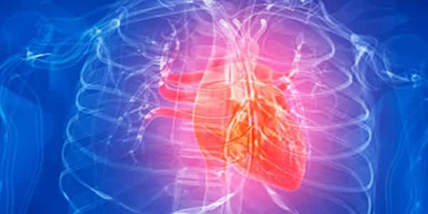 After-a-Heart-Attack-a-Gene-Hack-may-be-able-to-Heal-the-Heart-1
