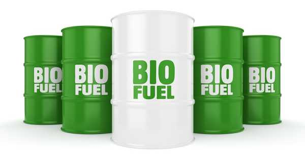 Biofuels Provide an Efficient Approach to Reduce the Emissions of Shipping