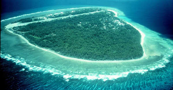 Coral Reefs may be Saved if Reforestation is Undertaken
