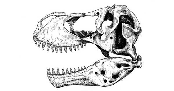 Dinosaur Evolution in Eastern North America is revealed through Peabody Fossils