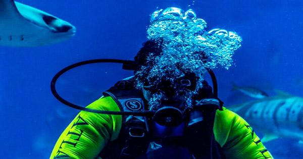 Divers Describe the Creepiest things they've Found Underwater