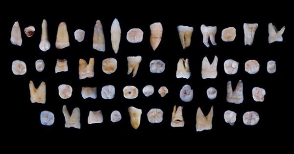Earliest Evidence of Humans in Arabia could Explain Migrations out of Africa