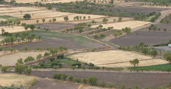 Economic Technique for Soil Health Measurement in the Dryland Agriculture