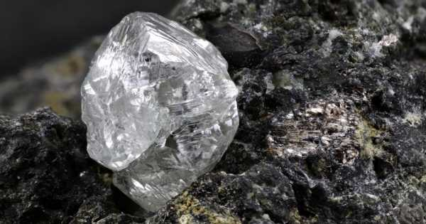Nature-Creates-Diamonds-by-Recycling-Garbage-and-former-Living-Organisms