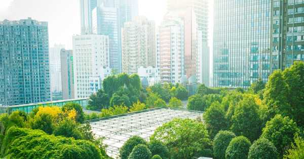 New Software for Creating Environmentally Friendly Cities