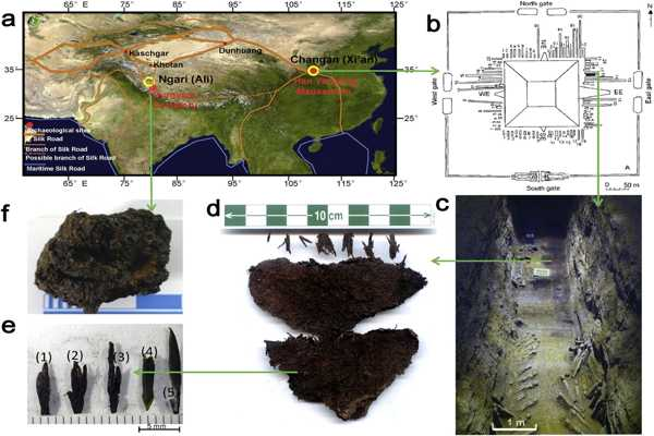 Oldest Evidence of Human Presence in the Tibetan Plateau 1