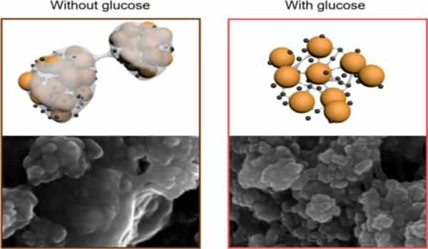 Researchers-created-a-Longer-lasting-and-Sustainable-Lithium-Sulfur-Batteries-1