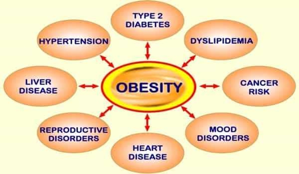 Detection-of-a-Potential-Obesity-Risk-Indicator-while-Sleeping-1