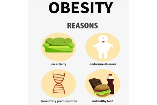 Obesity-is-not-Caused-Solely-by-Overeating-according-to-Scientists-1