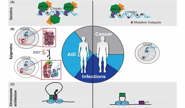 Our-Genome-and-Epigenome-will-aid-in-Cancer-Prevention-Detection-and-Treatment-1