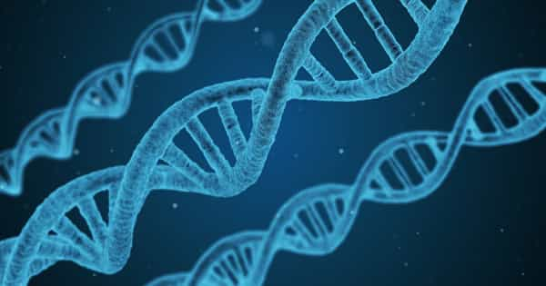 Our Genome and Epigenome will aid in Cancer Prevention, Detection, and Treatment