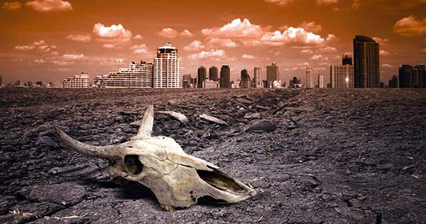 Telltale Signs of an Approaching Mass Extinction Event are on the Rise, Scientists Say
